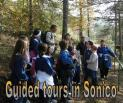 Guided Tours in Sonico